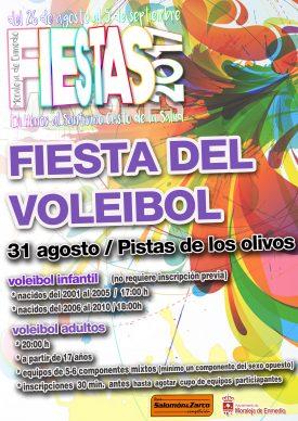 Fiesta del Voleibol