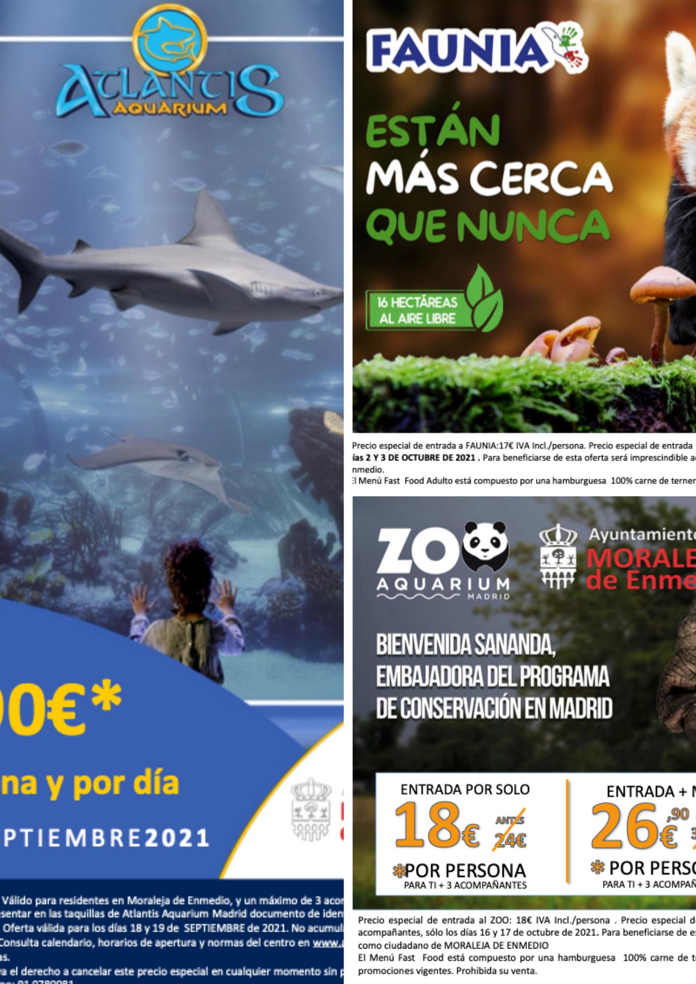 Días Especiales en Zoo Aquarium de Madrid, Faunia & Atlantis Aquarium